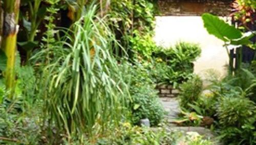 Sài Gòn: Về trong